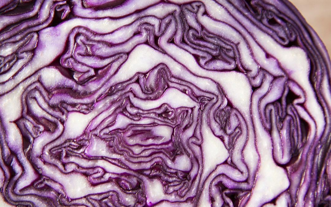 Dieta Kapuściana – przeciwwskazania i jadłospis